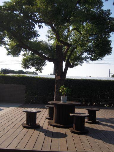 大仙公園20101017 019_512