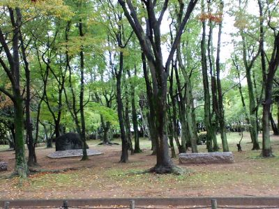 大仙公園20101102_400