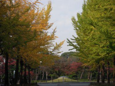 秋の日本庭園・大仙公園 004_400