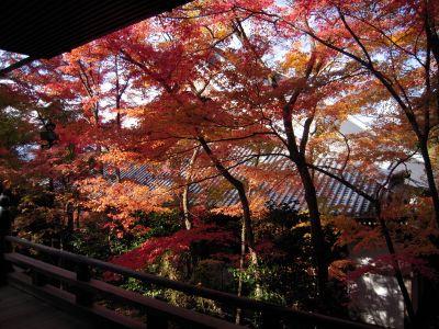 京都・南禅寺真如堂・永観堂 012_400
