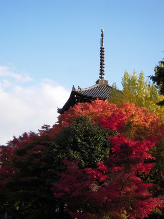 京都・南禅寺真如堂・永観堂 040_450