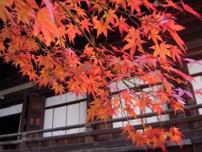 京都・南禅寺真如堂・永観堂 032_400