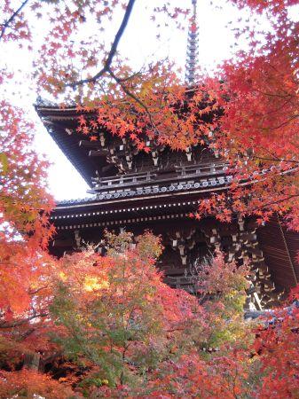 京都・南禅寺真如堂・永観堂 039_450