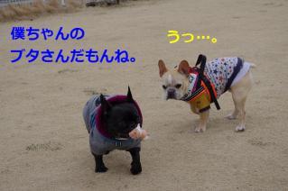 IMGP8700.jpg
