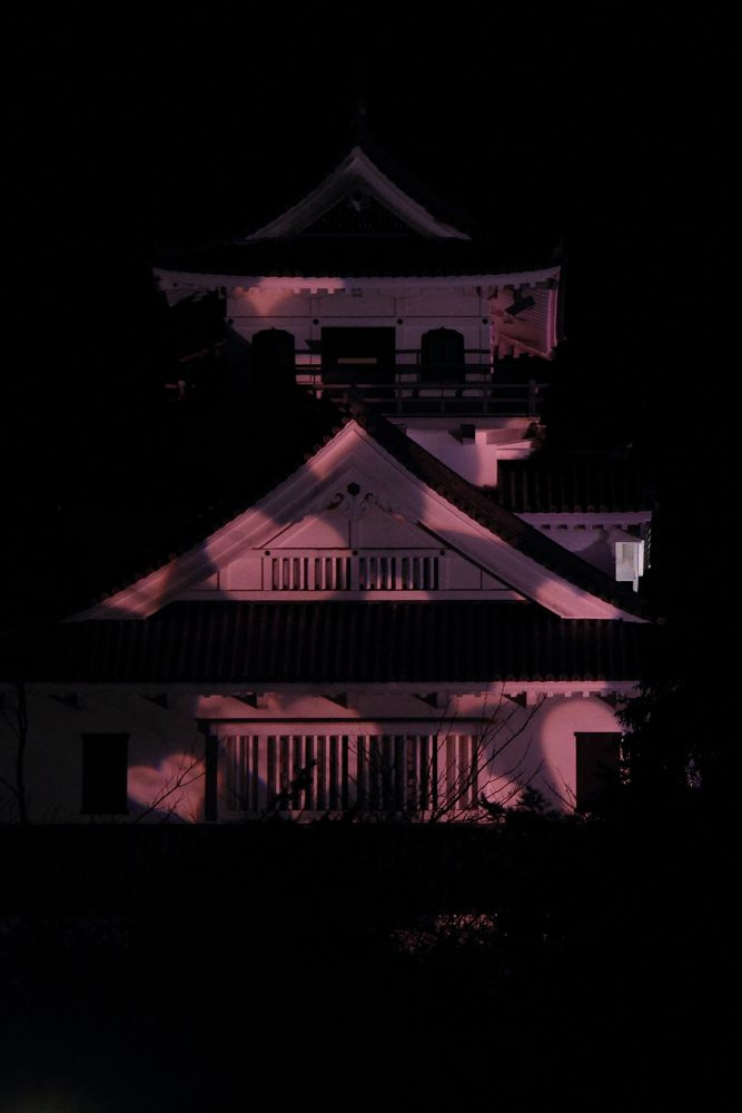 長浜城ライトアップ