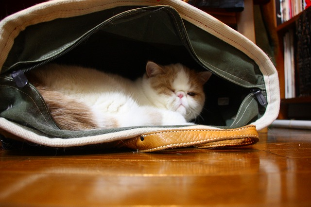 旅行鞄にジャム