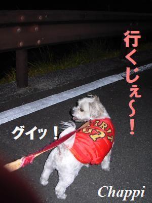 蟆冗伐螳カ蜀咏悄鬢ィ+993_convert_20091220235322