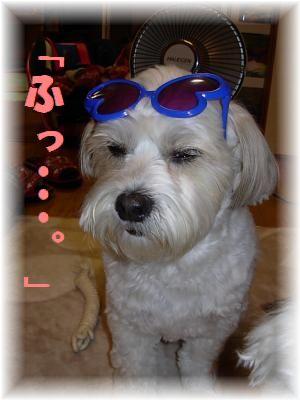 蟆冗伐螳カ蜀咏悄鬢ィ+1177_convert_20100112201515