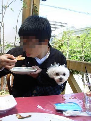 蟆冗伐螳カ蜀咏悄鬢ィ+563_convert_20100408200610