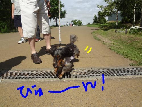 snap_chapuco_201170181221.jpg
