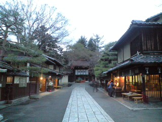 kyoto (13)