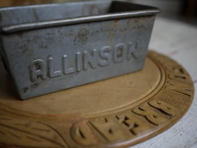 allinson 2009年2月