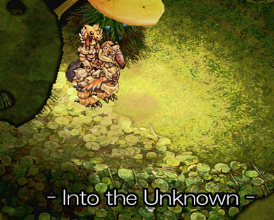 Into the Unkwon