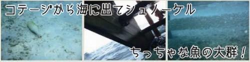 0810_モル_3日目-2