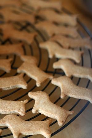 091108 玄米クッキー マクロ日