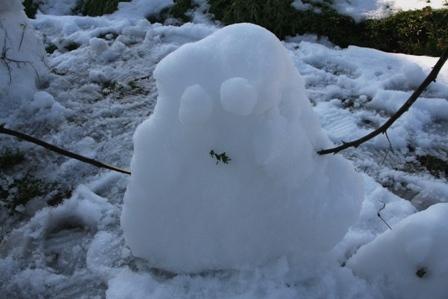 20110108 雪だるま (3)