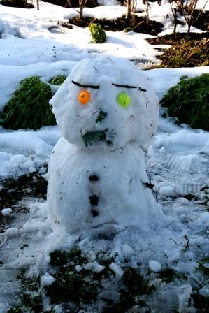 20110108 雪だるま (7)