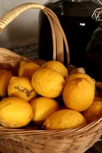 20110124 レモン