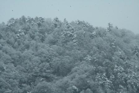 20110125 雪山
