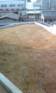 屋上緑化芝敷