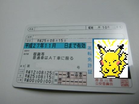 CIMG5272-1.jpg