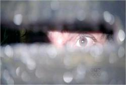 隙間から外の様子を見ているリカウドの目