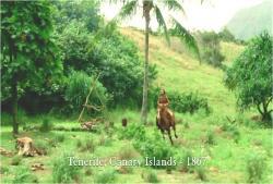 1867年ある島で、馬を走らすリカウドという男