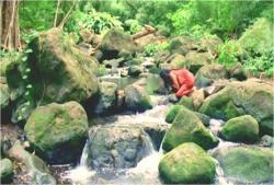 森に行き、水を飲む女
