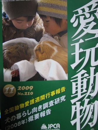めぃ姉は愛玩動物飼養管理士