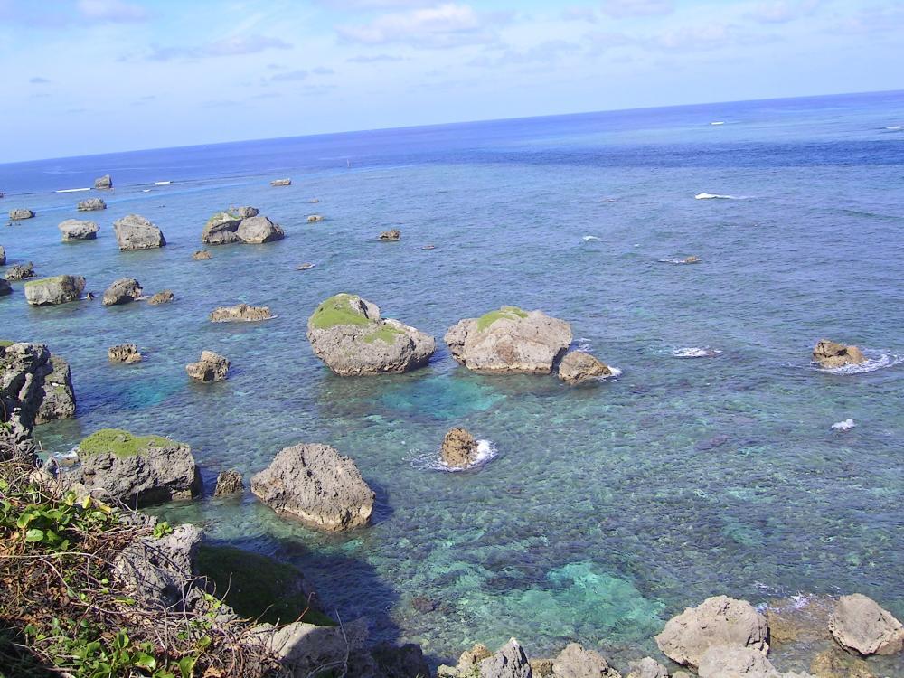 津波石と海
