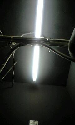 2010_04_23_25.jpg
