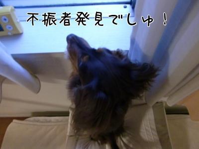 7VcY_xU7.jpg