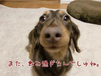 foRip_dD.jpg