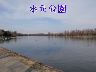 r4kajhN1.jpg