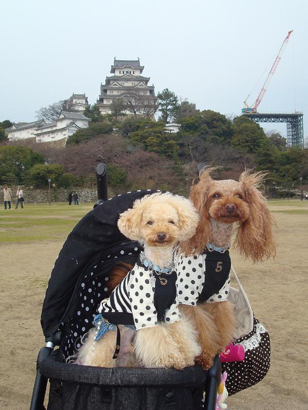13姫路城02