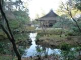 kyotoo