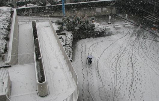 雪はすべります