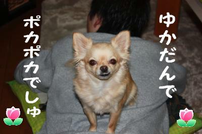 IMG_5833(2).jpg