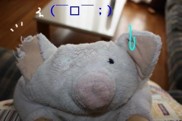 IMG_7715_convert_20100316203850.jpg