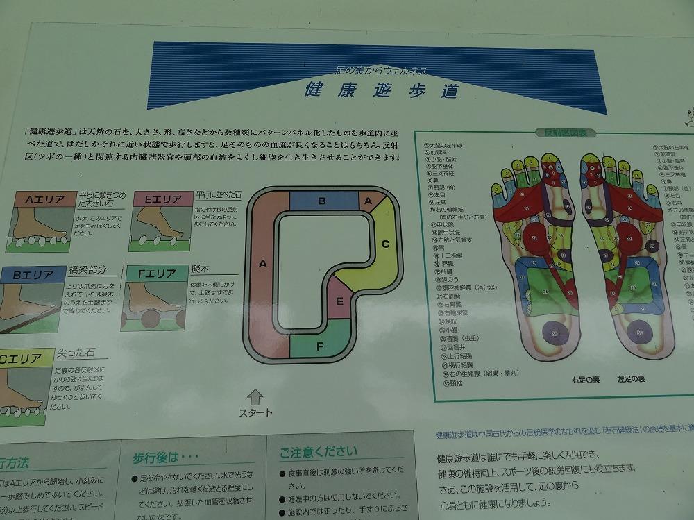 DSC02501.jpg