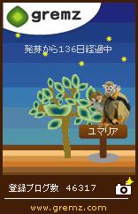 3-20100512_saruoyako.jpg