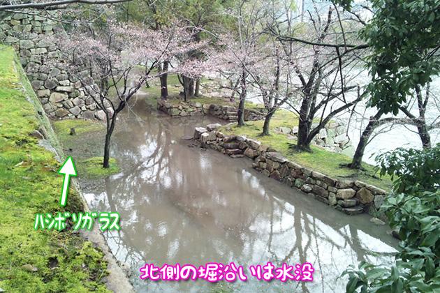20120403hiroshimajo01_20120403233416.jpg