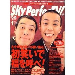 hatuwarai_20110106164418.jpg
