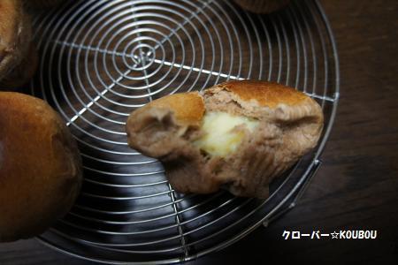 028_convert_20110127210103.jpg