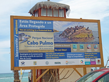 cabopulmo1.jpg