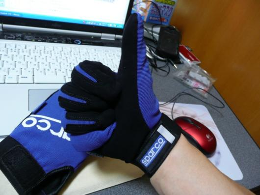 Sparco MECA GLOVES(3)