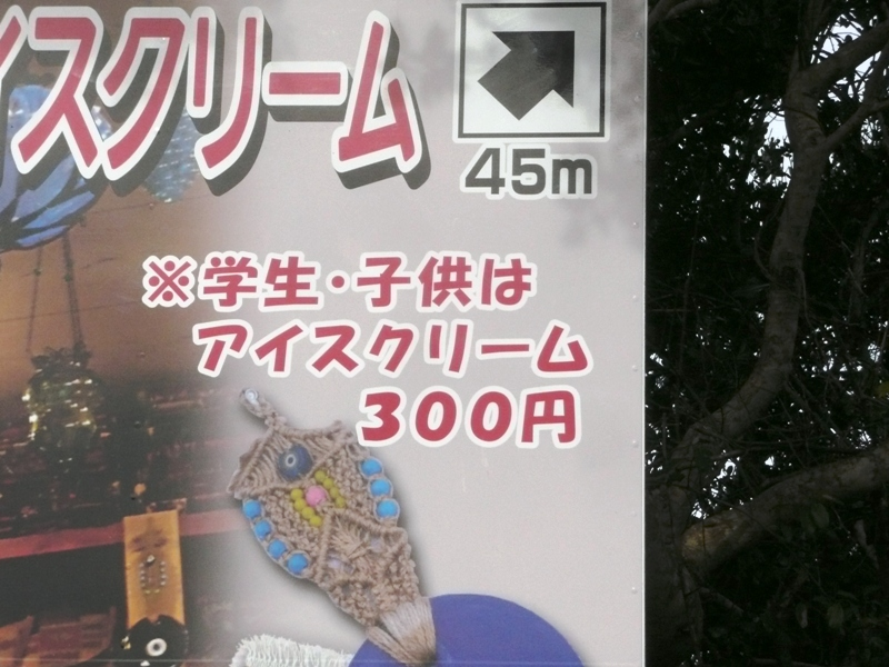 P1140669.jpg