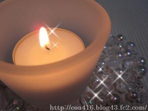 PICT0002_20100210170552.jpg