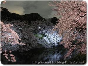 PICT0009_20100403035420.jpg