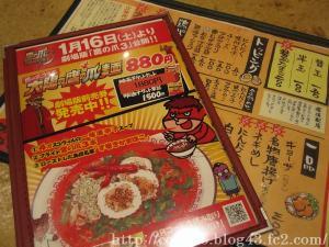 PICT0011_20100211014615.jpg
